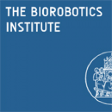 Ph.D. Programm In BioRobotics