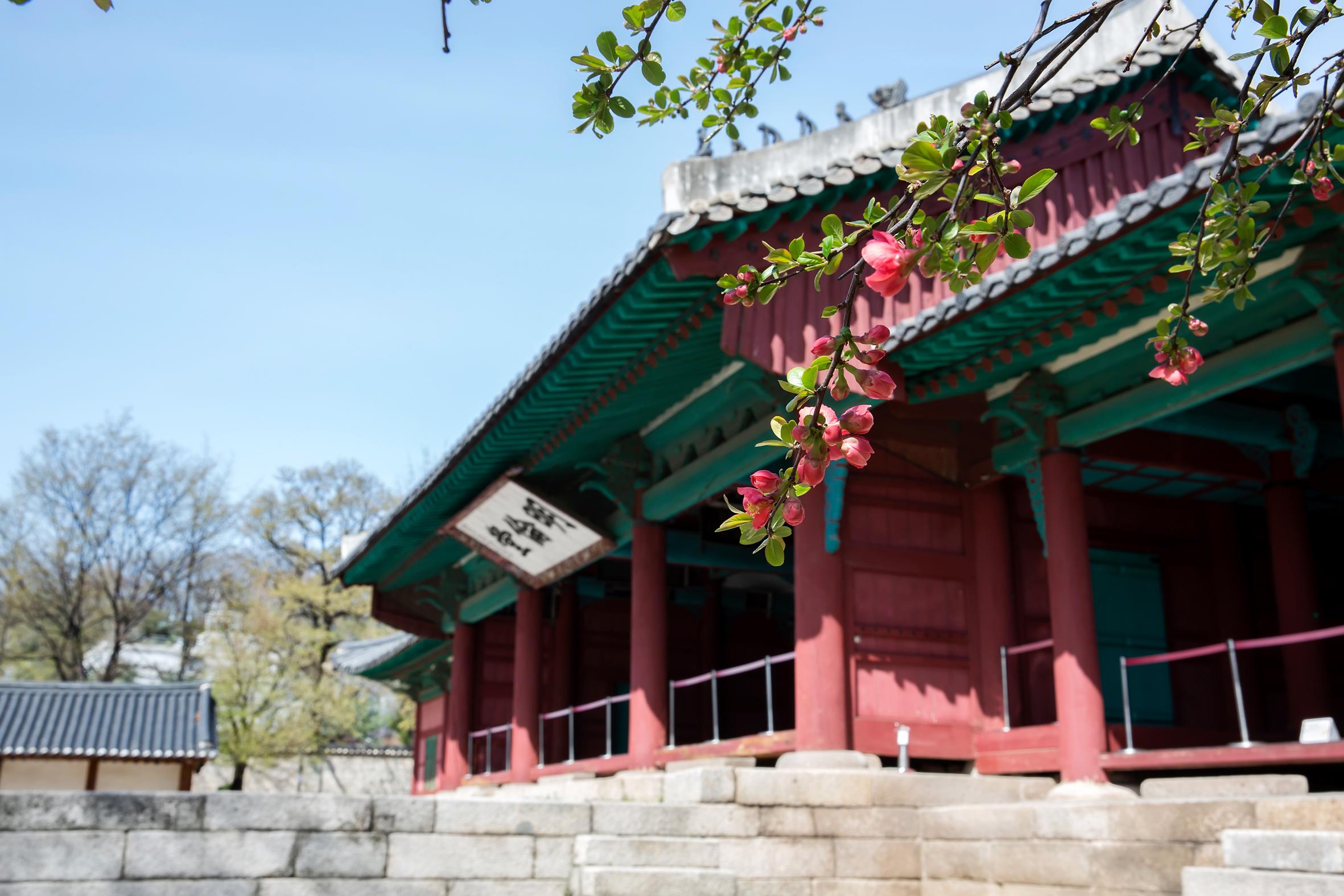 119298_seong-gyungwan.jpg
