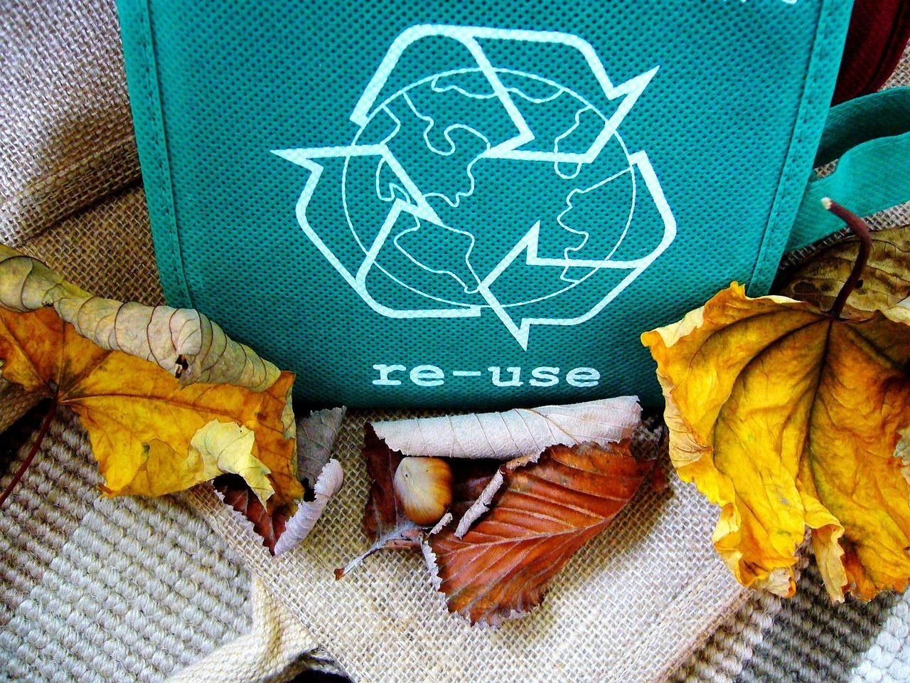recycle, reuse, recycling